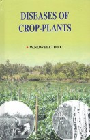 Diseases Of Crops Plants